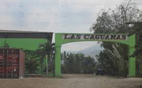 Outside photo of Las Caguamas strip club with its iguana green entry arch