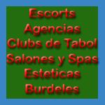 Escorts, agencias, clubs de tabol, salones y spas, esteticas, burdeles